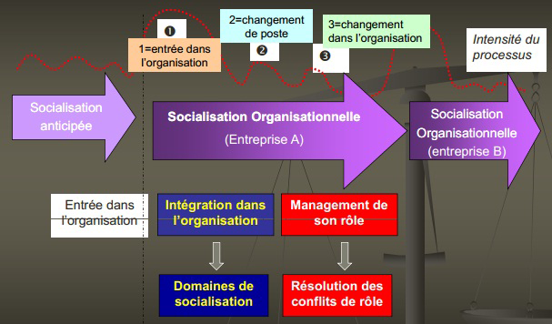 etapes_socialisation_organisationnelle